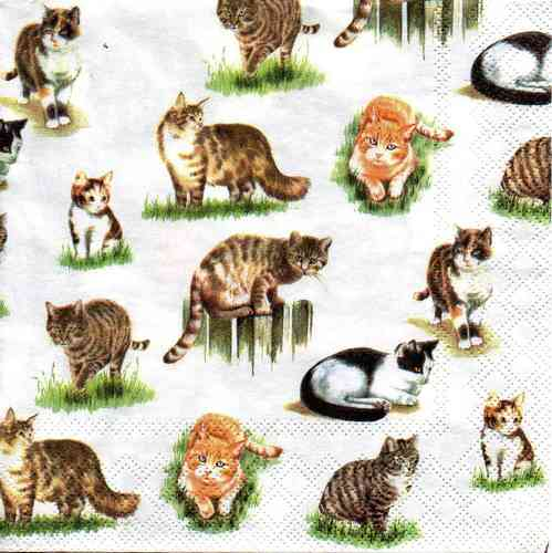 Serviette Lovely Cats