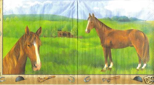 Serviette Champion Rust beige ! Pferd
