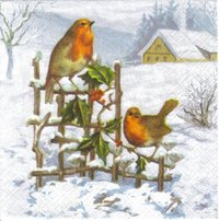 Serviette Vögel im Winter ! Robin
