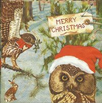 Serviette Owls Message ! Eulen Hase XMAS