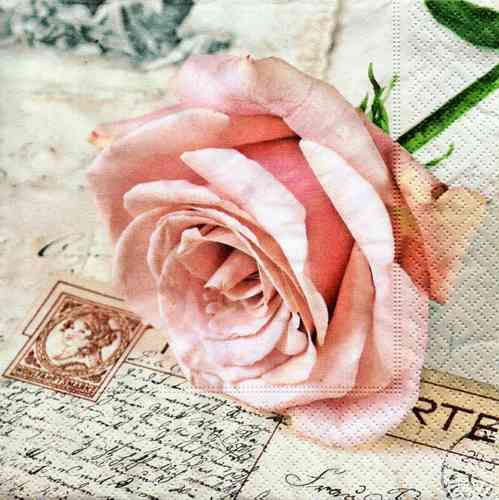 Serviette Postcard Rose