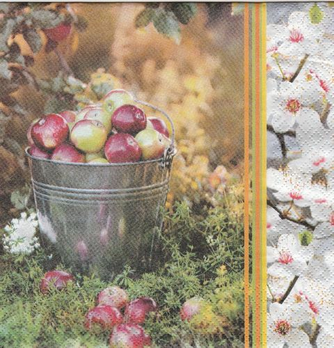 Serviette Apple Season